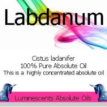 labdanum absolute oil