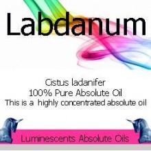labdanum absolute oil