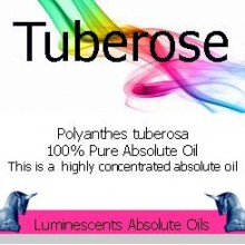 Tuberose Absolute Oil label
