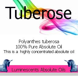 Tuberose Absolute Oil label
