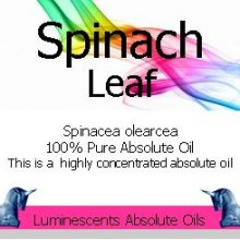 Spinach Leaf absolute Oil Label
