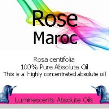 Rose Maroc Absolute Oil