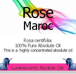 Rose Maroc Absolute Oil