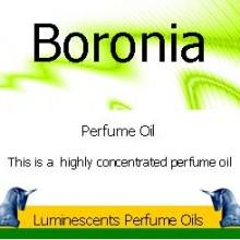 Boronia perfume oil label
