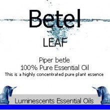betel leaf essential oil label