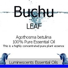 Buchu Leaf essential oil label