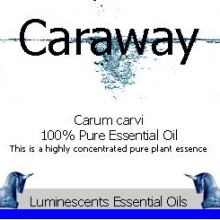 caraway essential oil label