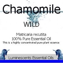 Wild Chamomile essential oil label