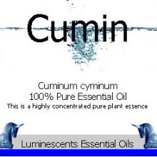 Cumin see essential oil label