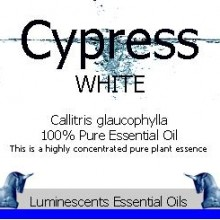 white cypress essential oil label