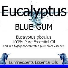 eucalyptus blue gum essential oil label