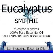 eucalyptus smithii label