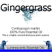 gingergrass essential oil label