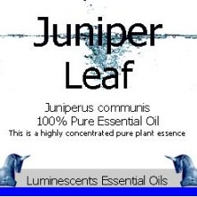 juniper leaf essential oil label