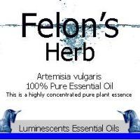 Felons Herb