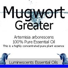 Great Mugwort Label