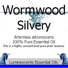 silvery wormwood essential oil