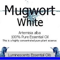 White Mugwort Essential-oil