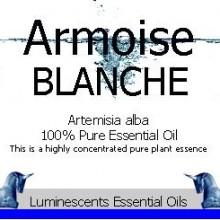 armoise blanche label