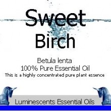 sweet birch essential oil label