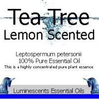 Tea Tree Lemon Scented