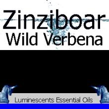 Zinziboar Wild Verbena