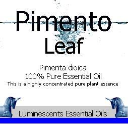 pimento leaf