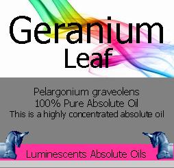 geranium leaf absolute oil label