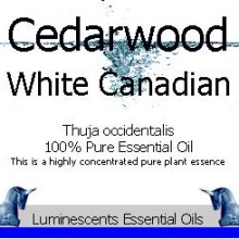 cedarwood white canadian essential oil