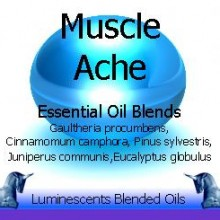 muscle ache blended essential oil