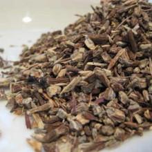 Echinacea-augustifolia-root