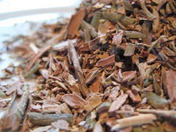 cascarilla bark