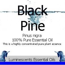 black pine essential oil label