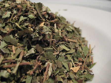 lesser periwinkle herb