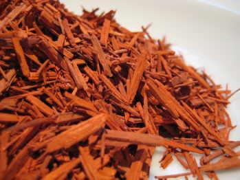 red-sandalwood-my-photo-001