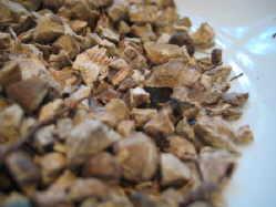 stone-root-Collinsonia-canadensis-medicinal-herbs