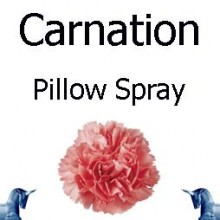 Carnation Pillow Spray
