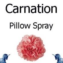 Carnation Pillow Spray